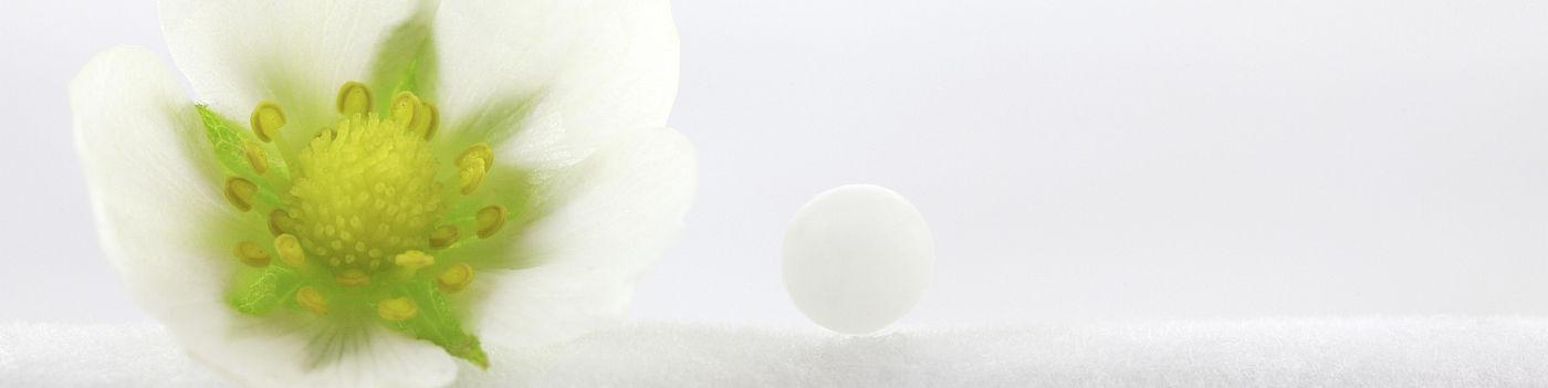 verkkokauppa-homeopaatti-com